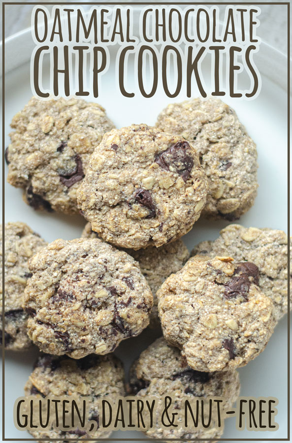 These oatmeal chocolate chip cookies are great for anyone with food allergies! They are gluten-free, dairy-free and nut-free, and super easy to make in just one bowl.