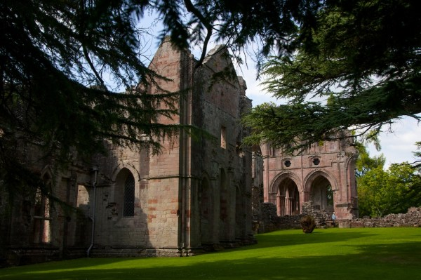 The abbey seen through the branches of the yew