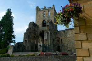 Jedburgh Abbey (8)