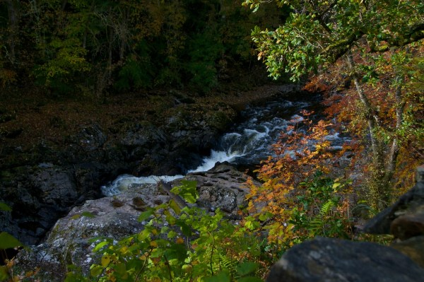 Killiecrankie Autumn (3)