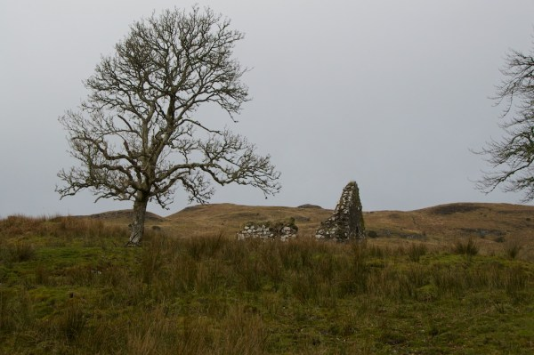Ardchattan old church (9)