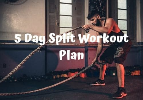 5 day split workout plan