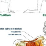 Exercises to Improve Your Posture and Bring Relief to Your Back & Spine, Part 2