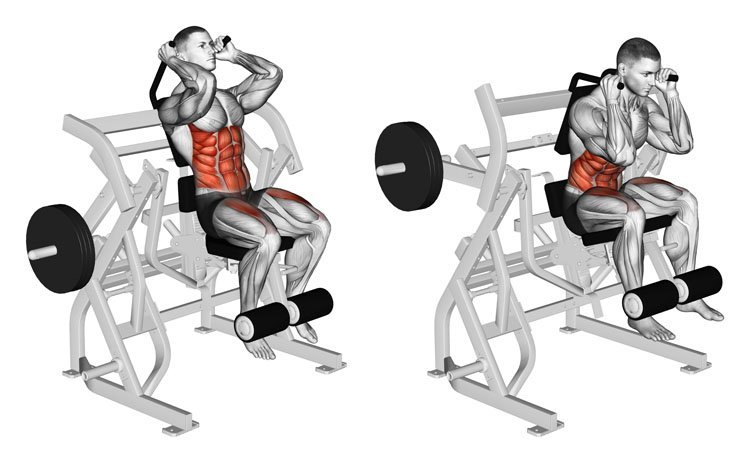 © Sasham   Dreamstime.com - Exercising for bodybuilding. Bending body to abdominal muscles and legs