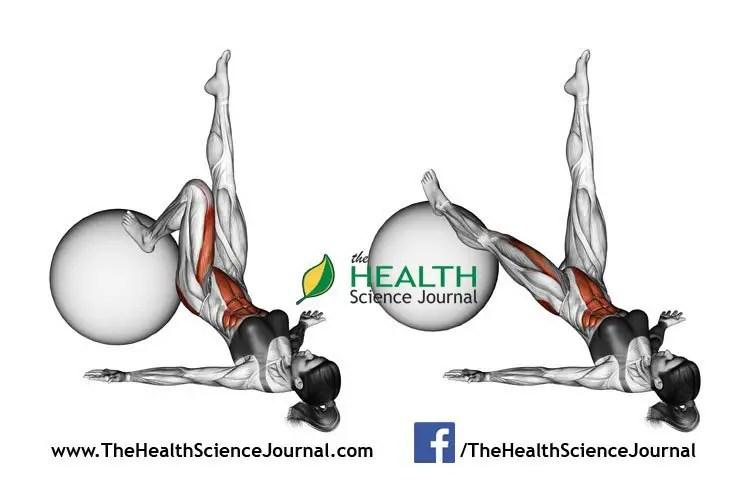 © Sasham   Dreamstime.com - Fitball exercising. Extension of one leg on fitball. Female