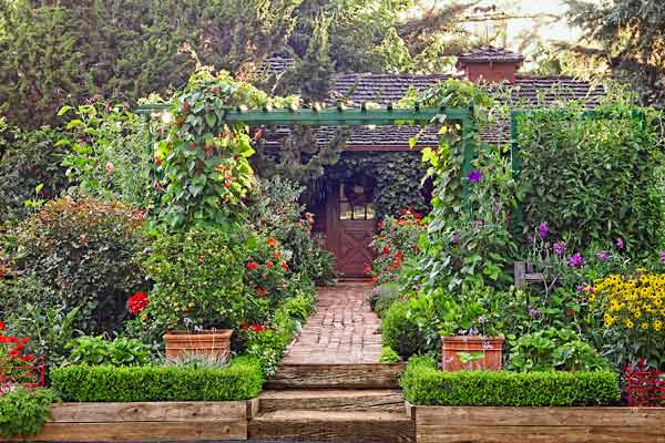 Edible Landscapes: Beauty, Health, and Affordable Food All in One