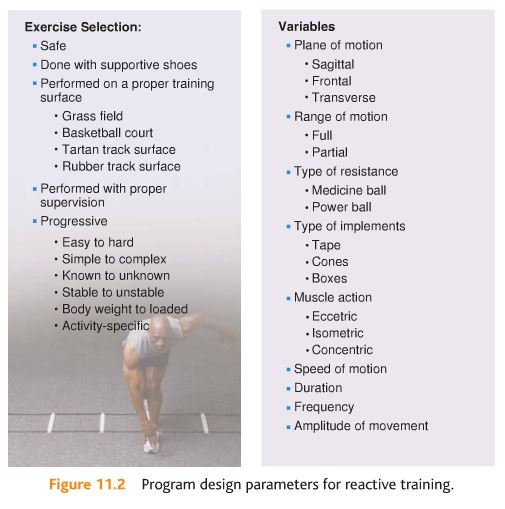 NASM Chapter 11 - Plyometric (Reactive) Training Concepts