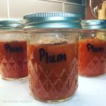 Simple Instant Pot Plum Butter
