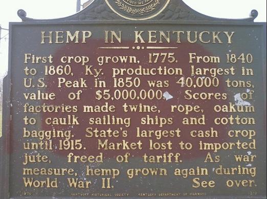 Kentucky Hemp Industry