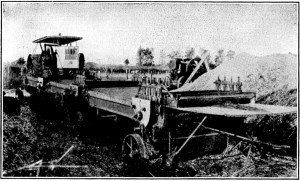 Hemp Machinery