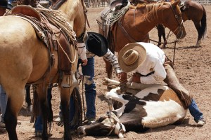 The Range Call Ranch Rodeo pits teams of local ranchers against each other in various competitions that replicate day-to-day activities for area working ranches.