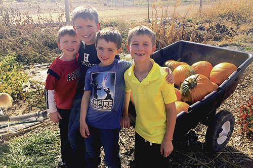 From left: Kasen Aguirre, Jackson Aguirre, Matthew Morgan and Grady Aguirre haul a cartload of pumpkins during the Rangely Community Gardens' October pumpkin giveaway. More than 800 pumpkins were given away free during the event.