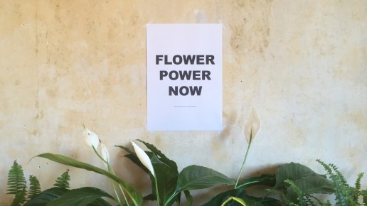 Flower Power Now // People, plants and protest
