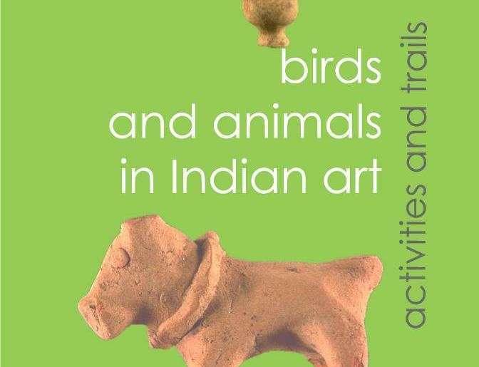 National Museum Birds Animals
