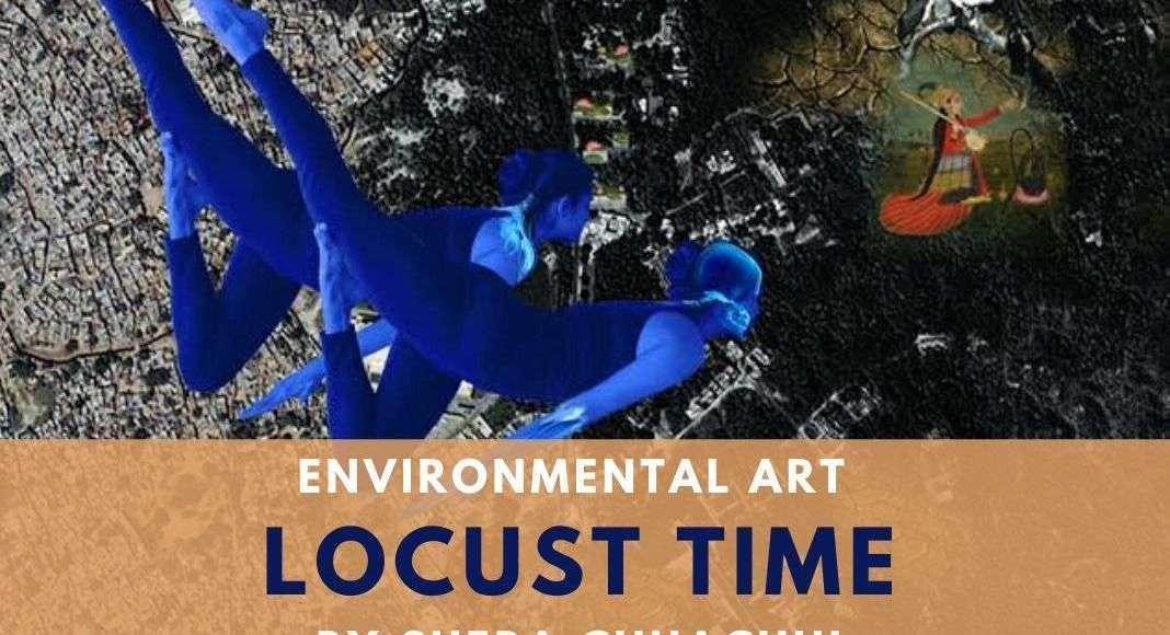sheba chhachhi locust time environment art