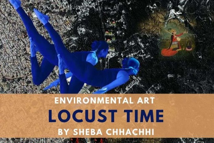 sheba chhachhi locust time environment art