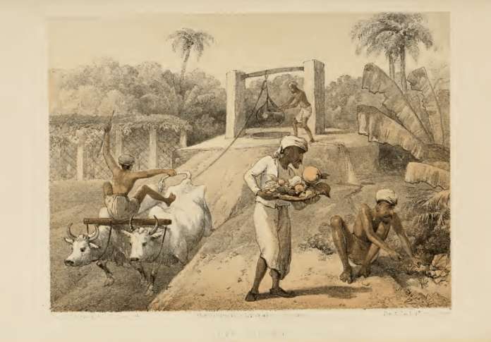 servants in Colonial India lithograph art