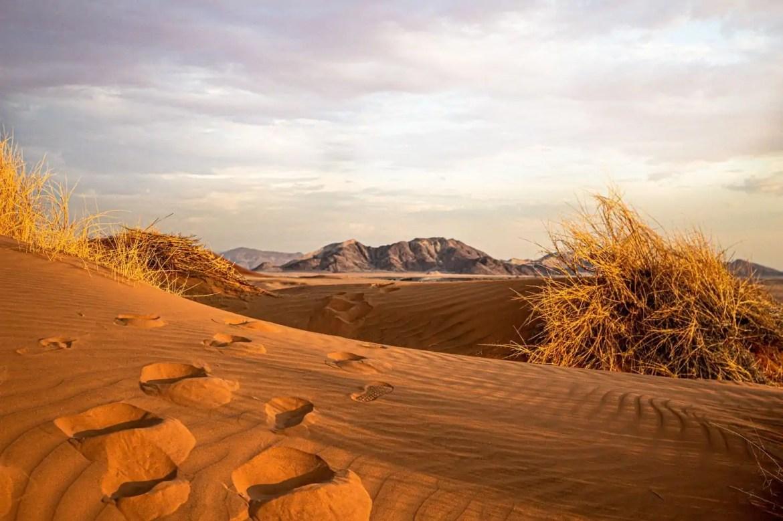 rondreizen Afrika Namibië woestijn
