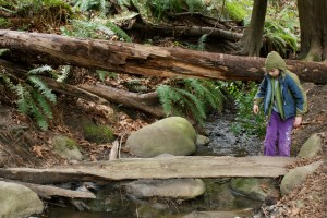Kids in Nature, Mercer Slough, Stream Play