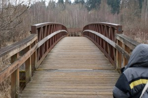 bridge, mercer slough, kids in nature, urban nature walk