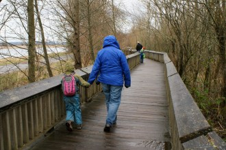 nisqually nwr, wetland, estuary, hiking with kids