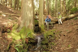 Moran State Park, Orcas Island, Hiking with Children