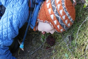 fungus, moran state park, Mountain Lake, Orcas island, hiking with children