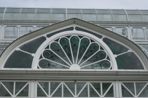 volunteer park conservatory, nature with kids