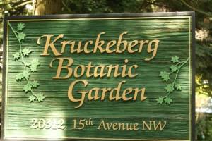 kruckeberg botanic garden shoreline kids in nature