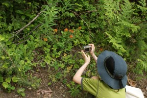kids in nature photography native plants tumwater botanical area