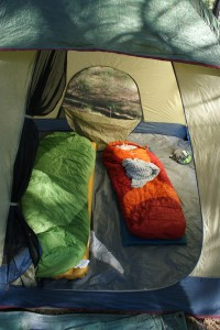 camping with kids gear