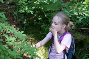 kids in nature, edible wild berries
