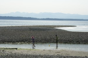 puget sound, kids in nature, beaches with children, summer