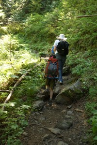 Boardman lake trail, hiking with children, mountain loop highway trails
