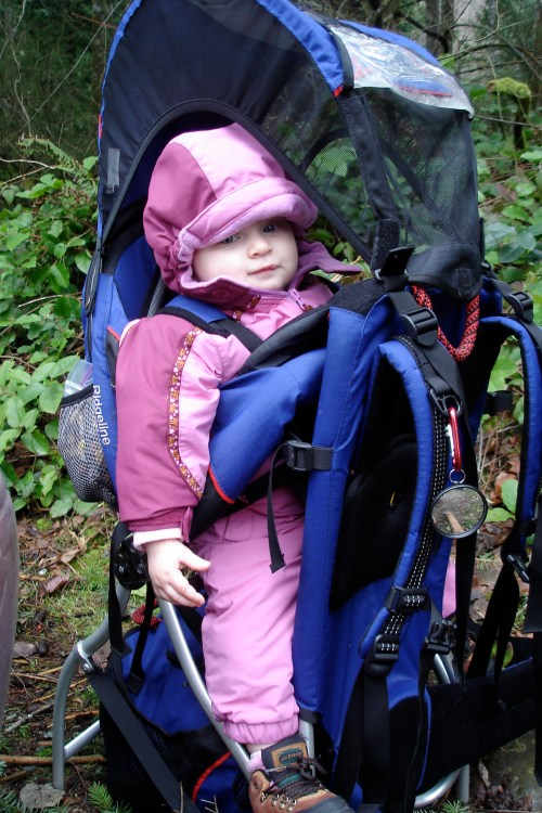 kids hiking, fall hiking with children, kid carrier backpack