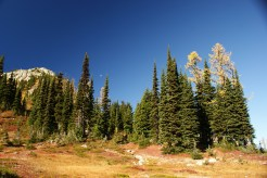 north cascades hikes, fall color