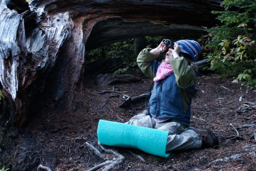 hiking with children, north cascades, Highway 20 hikes, fall hiking gear