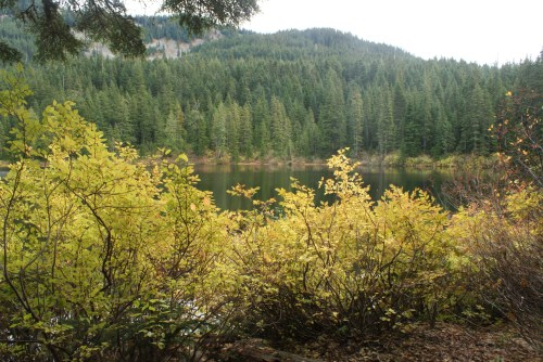 olallie lake, fall colors