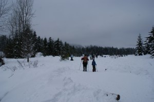 snowshoeing with children, snoqualmie pass, winter hiking kids