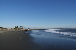 Damon Point, Protection Island, Ocean Shores, beach in winter, hiking in winter, hiking with children, birding with children