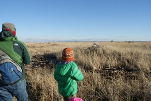 birding with children, snowy owls, damon point, ocean shores