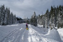 snowshoeing with children, winter kid hikes, smithbrook road,
