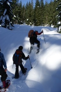 smithbrook road, stevens pass, snowshoeing with children