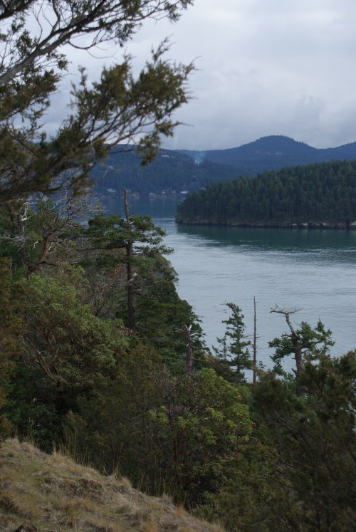 puget sound, washington park, anacortes, hiking fidalgo island