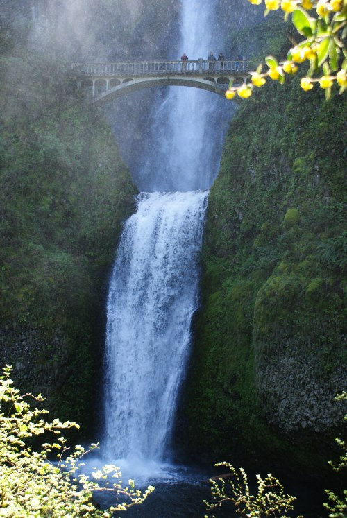 Columbia gorge, waterfall