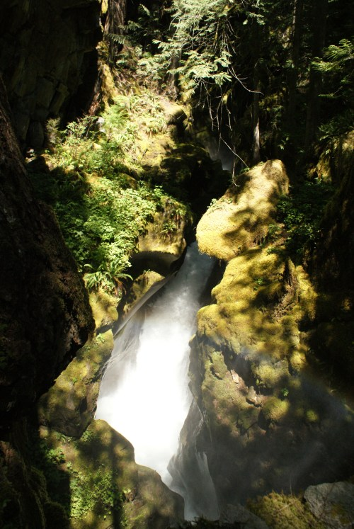 newhalem, waterfalls, hikes for kids