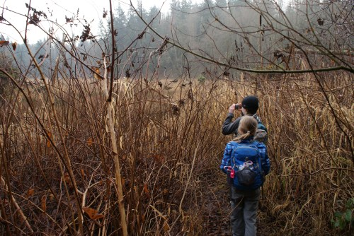Lord Hill Regional Park, snohomish county hiking, hiking with kids