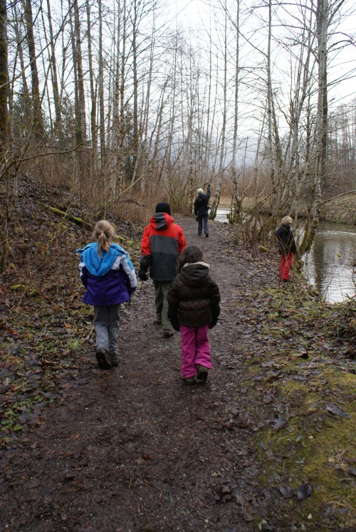marblemount fish hatchery, skagit eagles, hiking with children, winter hikes, washington