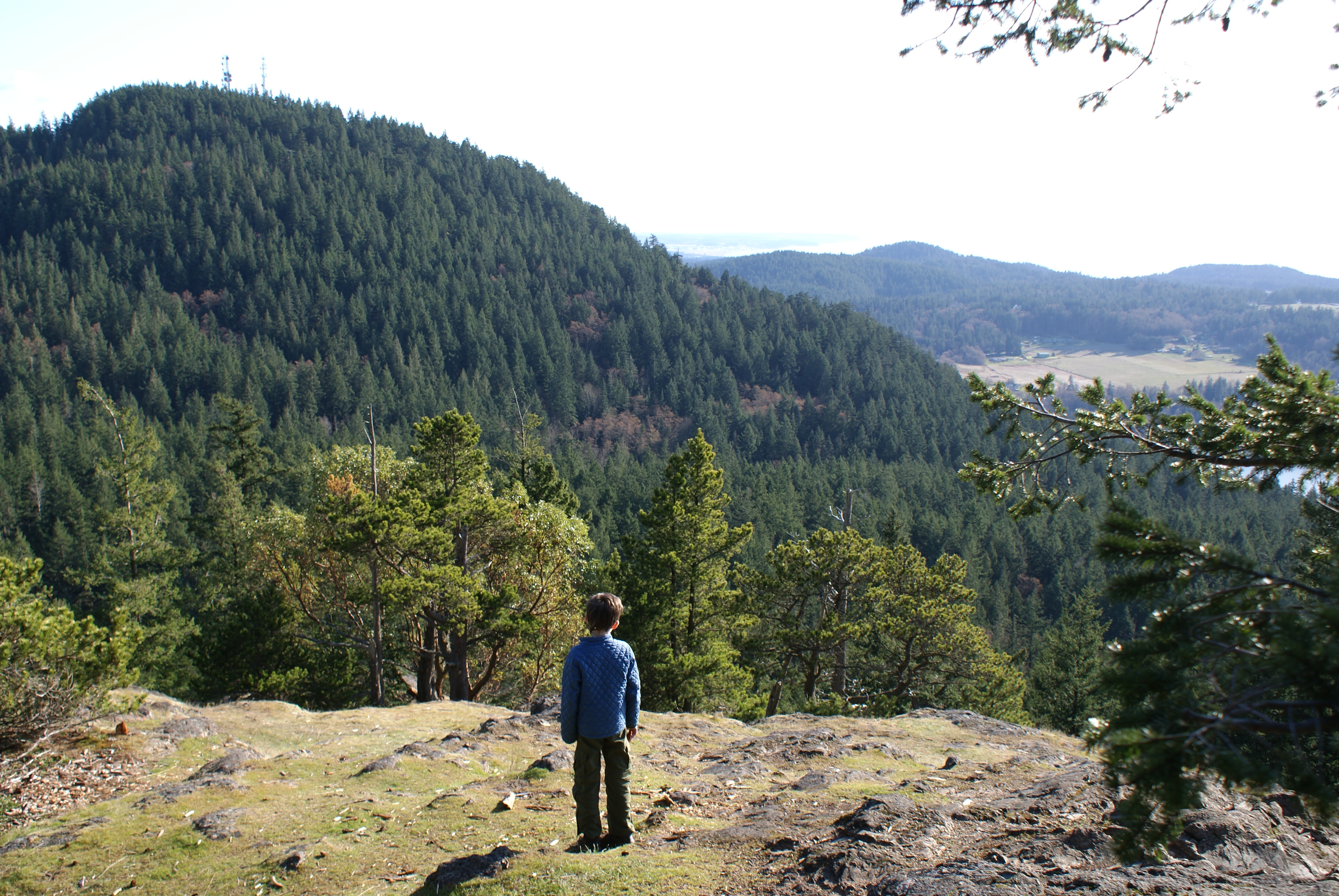 hikes for kids, anacortes community forest lands, day hiking san juans and gulf islands