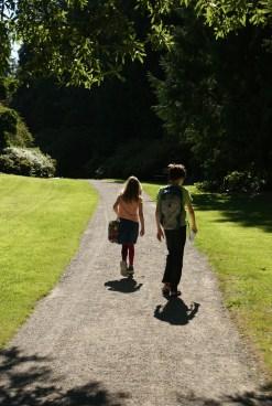 uw botanic gardens, washington park arboretum